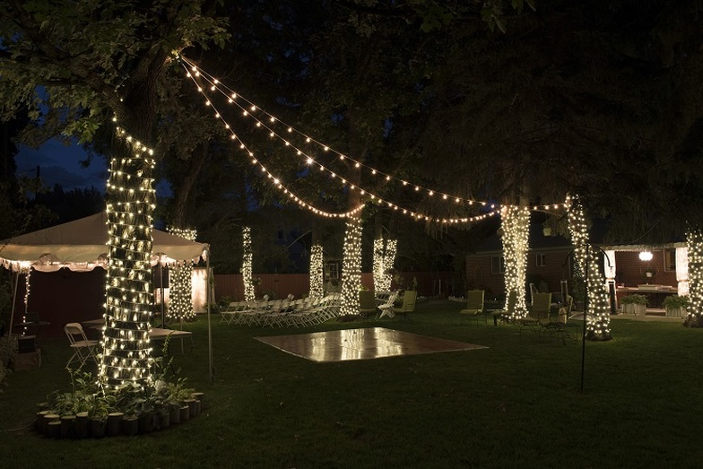 Twinkle Lights In Mccall Idaho Sound Wave Events